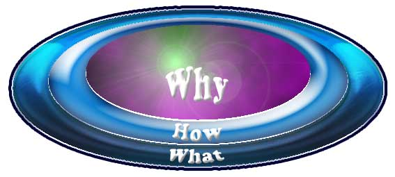 "The path to success begins with a ""Why?"""